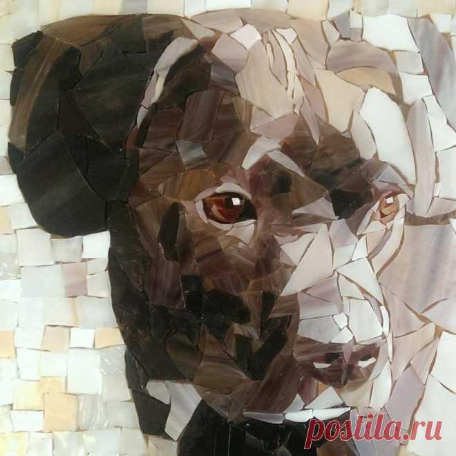 Dog Mosaic (Page 4) - Line.17QQ.com