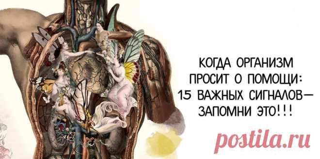 15 ВАЖНЕЙШИХ СИГНАЛОВ, КОГДА НАШ ОРГАНИЗМ ПРОСИТ ПОМОЩИ! | Всегда в форме!