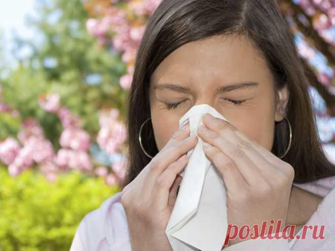 Какие анализы нужно сдать на аллергию у детей и взрослых? Виды, расшифровка и нормы анализов на аллергию