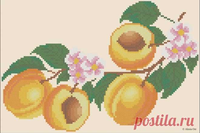 Абрикос. Схема для вышивки от X-Stitch Magic Скажите, а вы любите абрикосы? Предлагаем вам сохранить вкус лета и яркое солнышко в вашем доме надолго, и вышить ветку с абрикосами. Бесплатная схема для вышивки которой опубликована в блоге X-Stitch Magic.