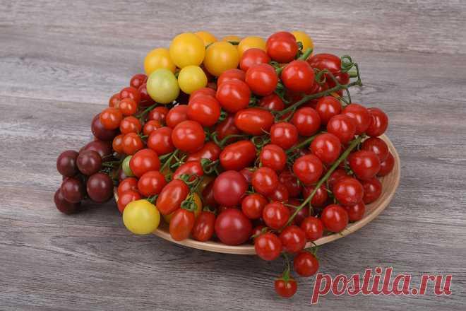 Преимущества черри-томатов — Ботаничка.ru