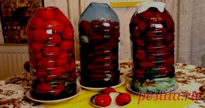Квашеные помидоры в пластиковых бутылках. Как бочковые (холодный засол) | Вкусно и полезно | Яндекс Дзен