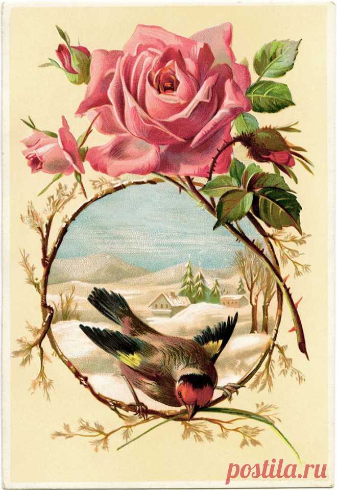 Декупаж винтажные картинки с цветами
