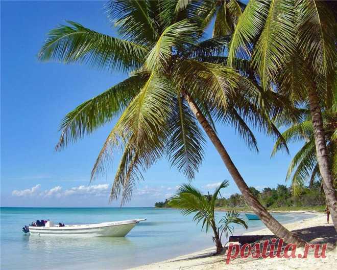Доминикана | Записи в рубрике Доминикана | Дневник sdor