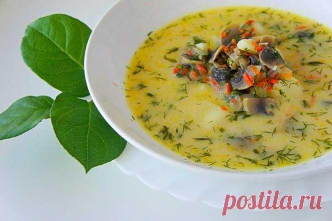 Грибной сливочный суп – невероятно вкусное и сытное блюдо!