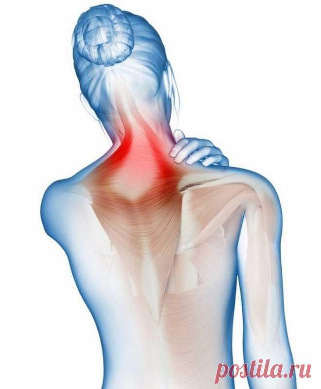 Какая связь между шеей и высоким давлением / Будьте здоровы