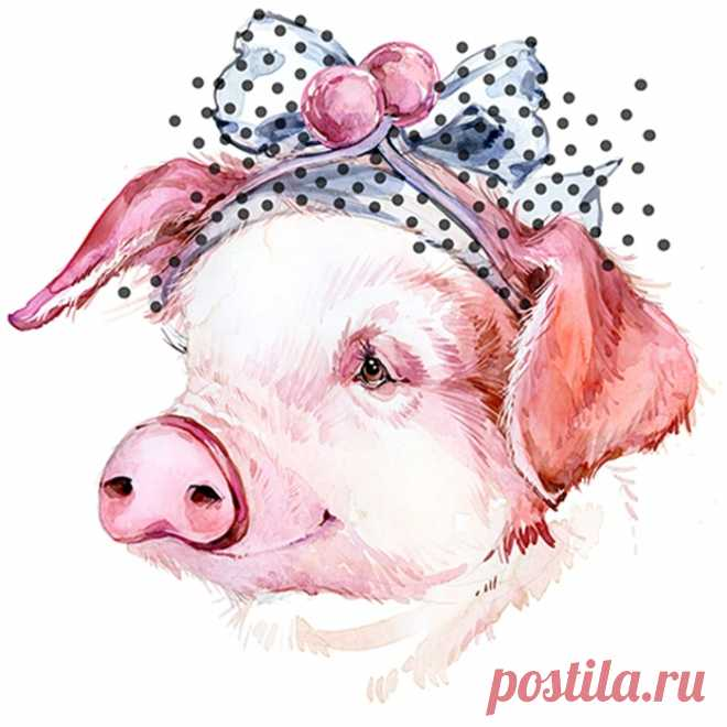 Всех, картинка для нового года свиньи