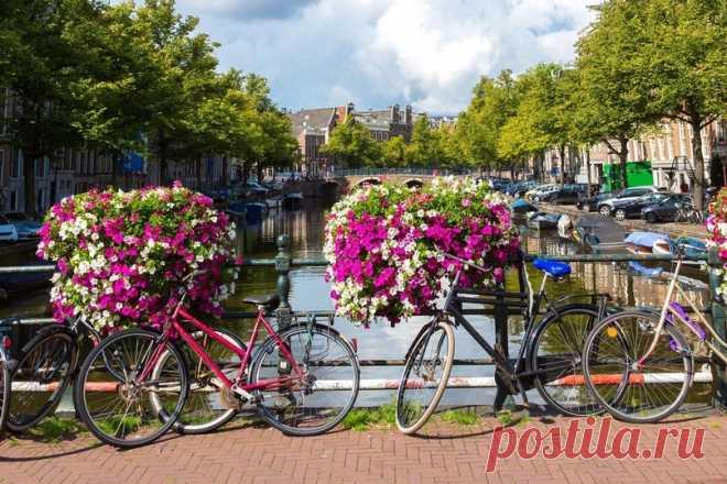 Велосипедная столица Европы | Журнал