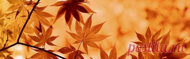 Осень Изображения · Pixabay · Скачать бесплатные картинки