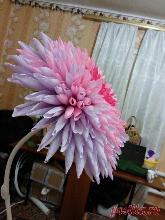 Мастер-классы. Цветы из бумаги. Фотозоны. МК