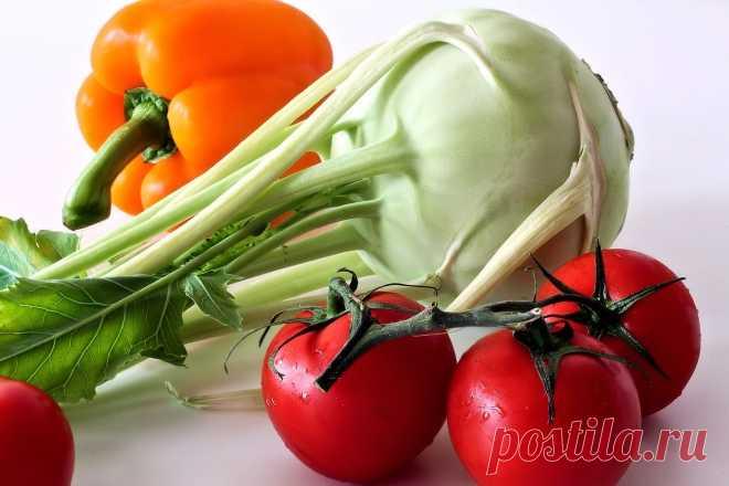 Огородные работы в августе - Венская дача Основные огородные работы в августе: — сбор урожая; — уход за вегетирующими растениями; […]