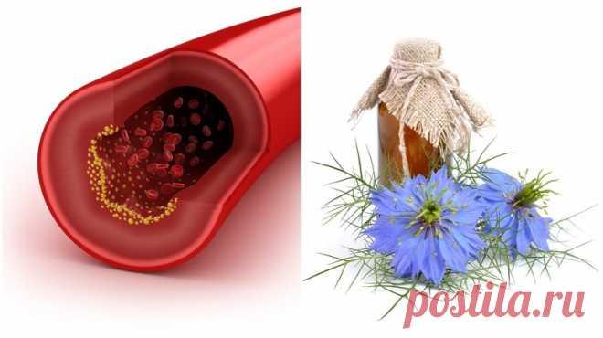 Регулирайте високото кръвно налягане с тази проста диета | sutrin. Com.