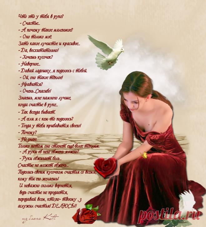 Красивая сиреневая роза фото время меня