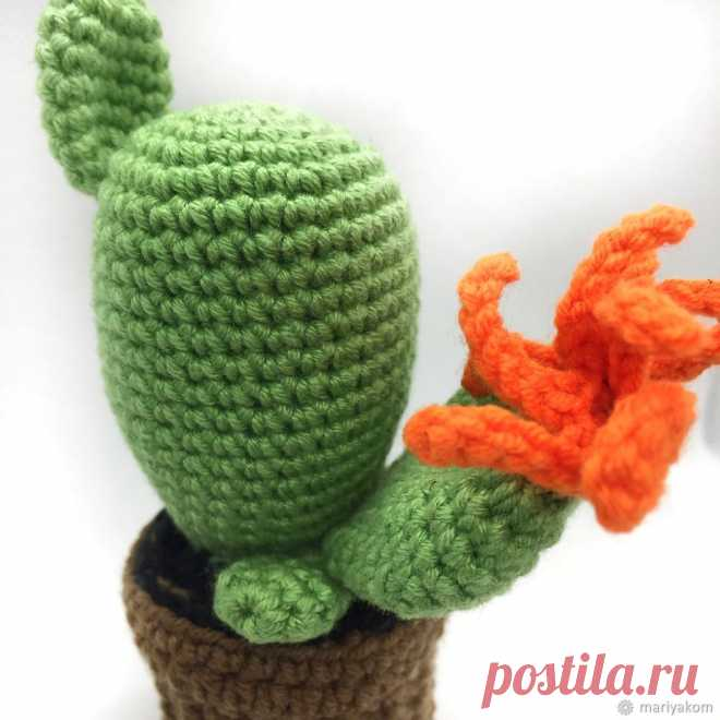 We knit a cactus needle case by March 8: publications and master classes – the Fair of Masters