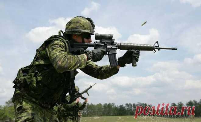 La representación canadiense del rifle de asalto del futuro En nuestros días el arma de tiro sobrevive no los mejores tiempos. En el mercado internacional se observa el reforzamiento constante de la competencia al déficit de las nuevas ideas de verdad frescas. Parecería, cheloveches...