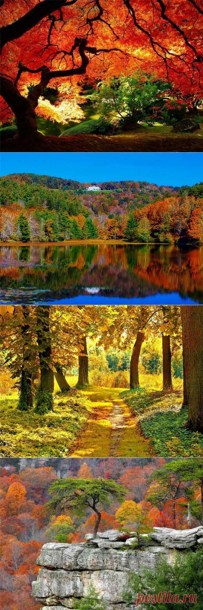Осени чудесная пора....