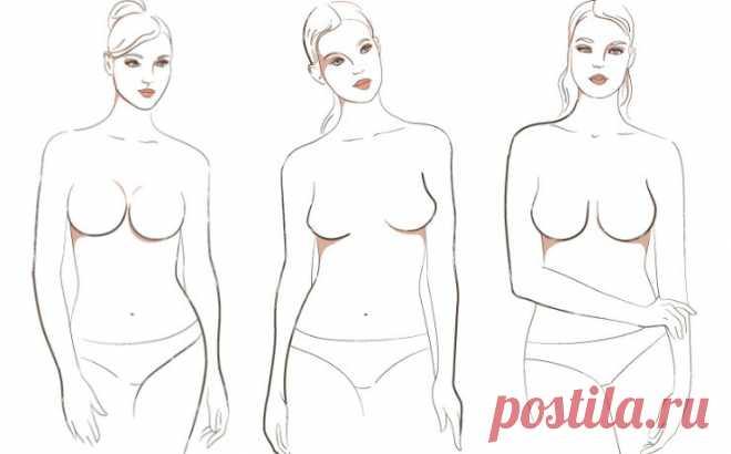 Фото типы женской груди фото 35-394