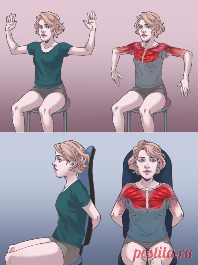 Упражнения на стуле, которые моментально избавят вас от боли в шее, спине и плечах / Будьте здоровы