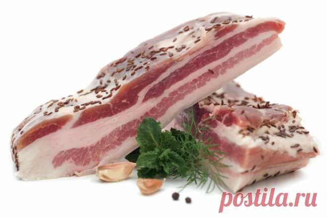 Соленая грудинка в домашних условиях из свинины