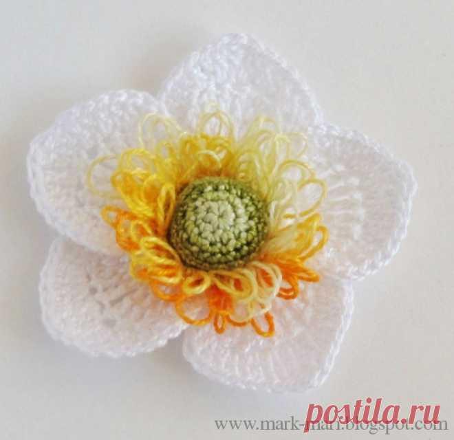 Цветок анемон крючком