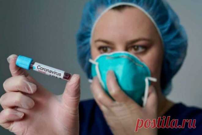 Группа крови и COVID-19: что говорят ученые - Неспешный разговор - медиаплатформа МирТесен