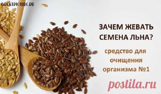 Зачем жевать семена льна — панацея от многих болезней - Интересный блог Зачем жевать семена льна — панацея от многих болезней.Зачем есть семена льна?Полезных свойств льна масса! Из тех, что нам наиболее интересны: