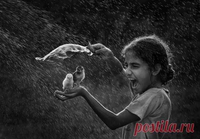 18 ч/б фото, каждая из которых заслуживает внимание и дарит эмоции | Российское фото | Яндекс Дзен