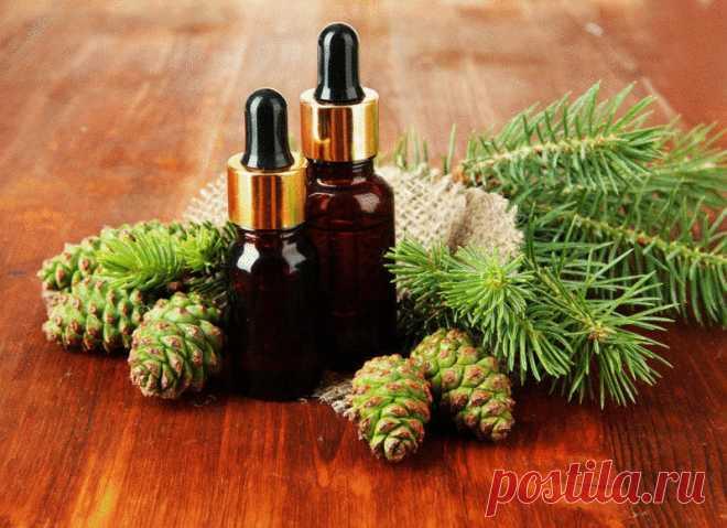 Неоправданно забытые лечебные свойства пихтового масла | Golbis