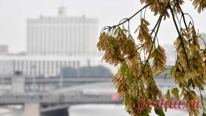 Роструд напомнил о длинных выходных в ноябре - Новости Mail.ru