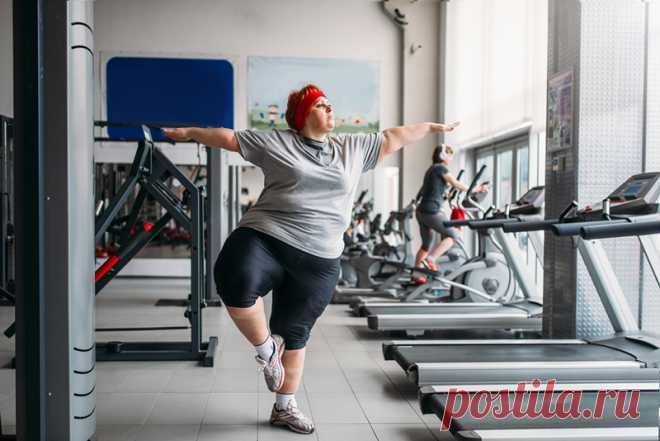 6 гормонов полноты отвечают за накопление жира, вот как их «выключить». Именно они заставляют женщин толстеть. - Образованная Сова