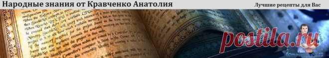 Горячие блюда на Новый 2019 год. 20 идей на Новогодний стол   Народные знания от Кравченко Анатолия