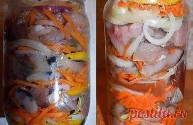 How to salt a tasty herring in Dutch