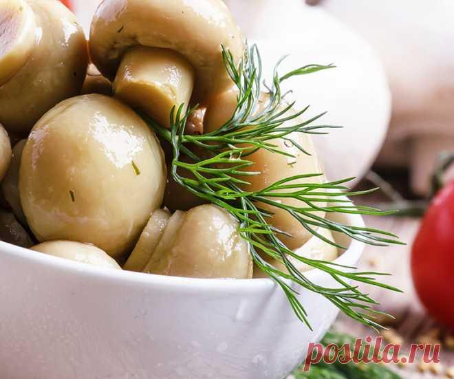 Маринад для грибов. Шампиньоны, опята, вешенки, на мангале и на зиму
