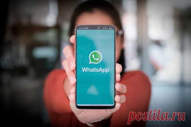 5 отличных функций в WhatsApp, которые должен знать каждый пользователь | ТехноКонтент | Яндекс Дзен