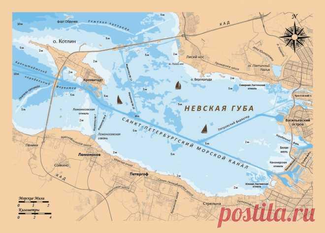 Невская губа в Санкт-Петербурге - об этом месте | Популярная наука | Яндекс Дзен