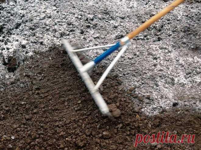 Как раскислить почву на участке / Домоседы