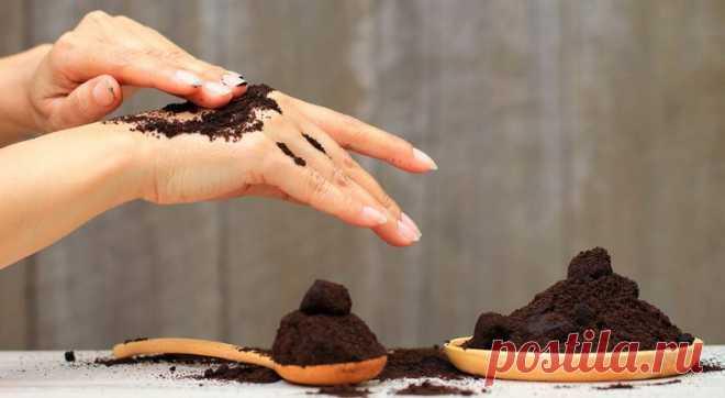 6 способов использовать кофейную гущу - Образованная Сова