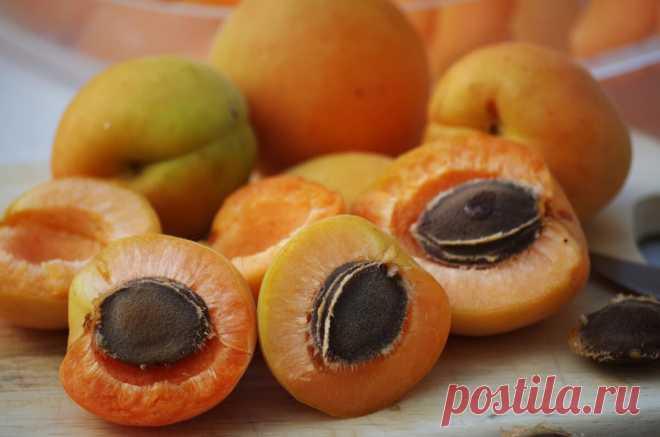 Готовим изумительную настойку на косточках абрикоса. | О САМОГОНЕ и ОБОВСЕМ | Яндекс Дзен