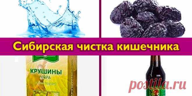 Сибирская чистка кишечника   Полезные советы