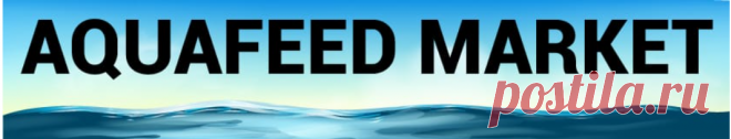 Aquafeed Market Trends, Growth, Share, Size and Forecast Research Report 2027  The global aquafeed market size is expected to reach USD 80.05 billion by 2027, exhibiting a CAGR of 5.3% during the forecast period.