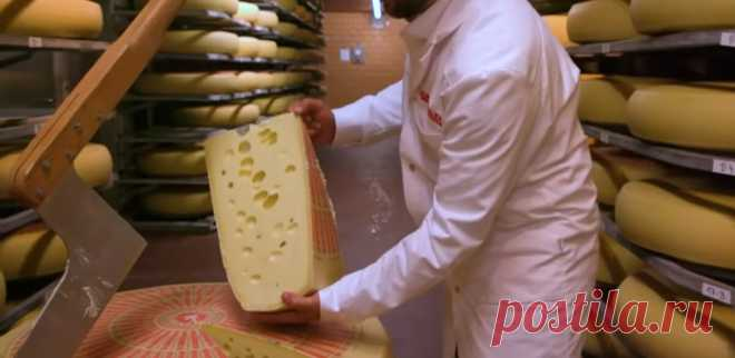 Потребление сыра снижает уровень вредного холестерина