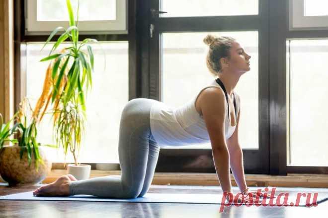 Простая йога от боли в спине