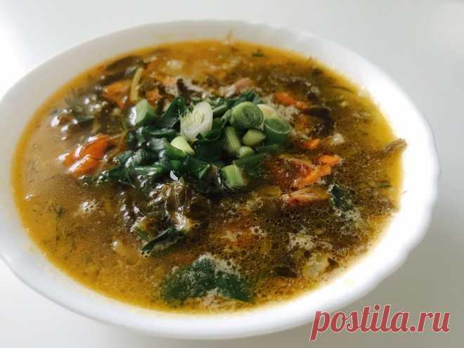 Такой суп я никогда не пробовал, научила его готовить соседка родом из Сахалина. Не знал, что ламинарию можно так использовать | Сам поешь и жену удиви | Яндекс Дзен