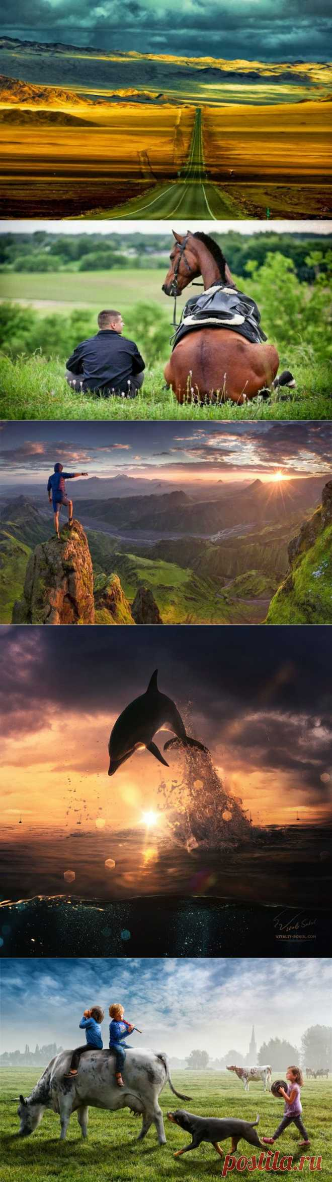Beautiful World : The Evening Collection of Wonderful and Funny Photos