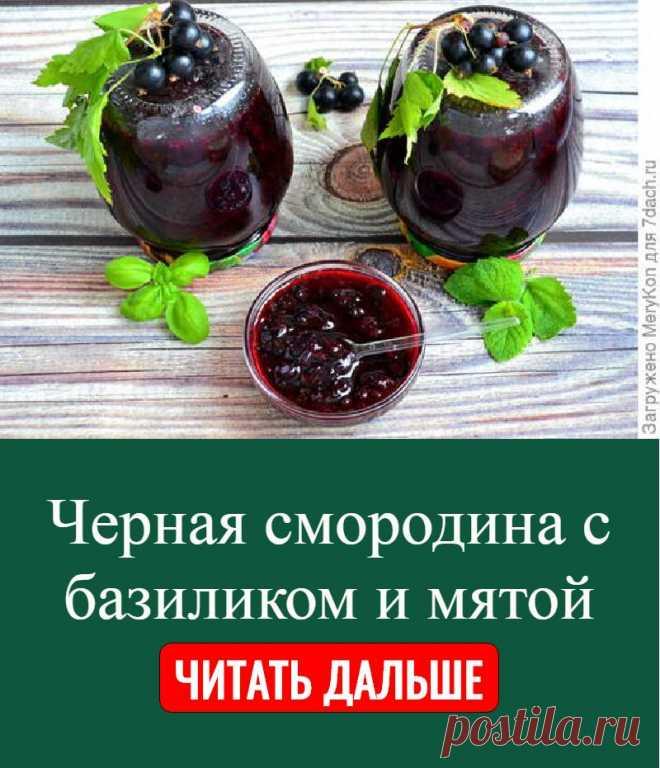 Черная смородина с базиликом и мятой