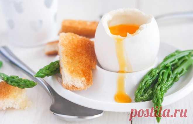 Как и сколько варить яйца всмятку и вкрутую — Kak-Sama.ru