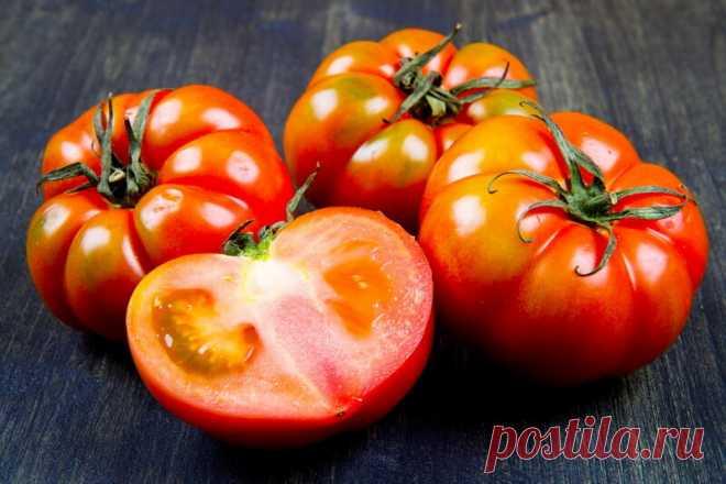 Польза аспирина для томатов   О Фазенде. Загородная жизнь   Яндекс Дзен