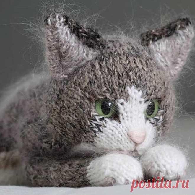 Вязаный котик спицами