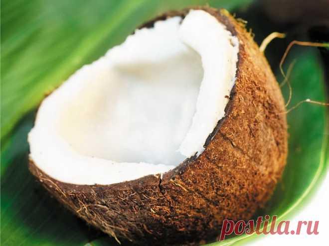 Можно ли открыть кокос без нервов? Предлагаем рассмотреть наиболее простые и удобные варианты, которые подскажут, как открыть кокос, фото и видео помогут лучше разобраться в процессе
