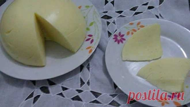 Queijo Manteiga Caseiro: Ele é muito fácil de fazer, econômico e rende muito, além de ser delicioso! - Receitas de Amigas O Queijo Manteiga Caseiro é fácil de fazer, rende muito e fica simplesmente delicioso. … Muito fácil de fazer e você pode preparar receitas doces e salgados com ele. INGREDIENTES 200g de amido de milho 250g de manteiga ou margarina 1 litro de leite 50g de queijo parmesão ralado sal a gosto Se você tem …
